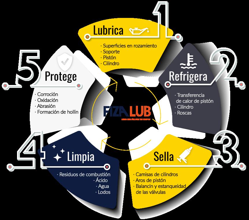 fizalub-infografia beneficios